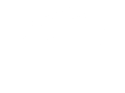 Border Model Aircraft Club Logo